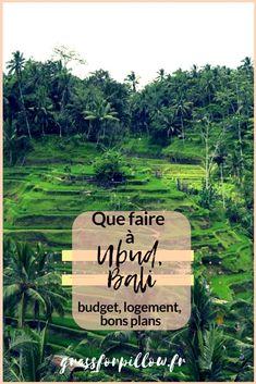 Que faire, où dormir, quel budget prévoir ? Tous mes conseils sur Ubud ! Gili Trawangan, Ubud, Voyage Bali, Les Cascades, Budgeting, How To Plan, Blogging, Happiness, Travel