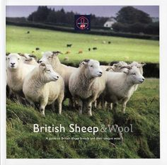 British Sheep & Wool Book by Blueface454 on Etsy, £9.99