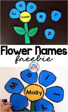 Flower Names - Name Building Practice Printable