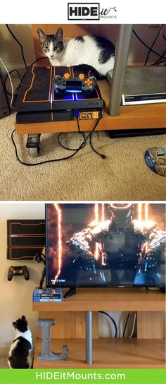 Great way to keep the cat from sitting on your PS4!