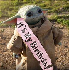 Yoda Meme, Yoda Funny, Funny Memes, Rey Star Wars, Star Wars Art, Star Wars Birthday, Birthday Wishes, Happy Birthday, Frases