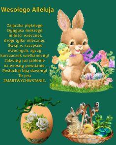 Daffodils, Easter Bunny, Teddy Bear, Easter, Daffodil, Teddybear