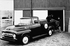 Pictures of Classic Ford Pickup Trucks: 1956 Ford F-100 Truck