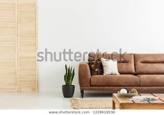 Pillows on brown leather sofa next to plant in white flat interior with wooden screen. Leather Sofa, Brown Leather, Sofa Next, Wooden Screen, Flat Interior, White Flats, Floor Chair, Photo Editing, Couch