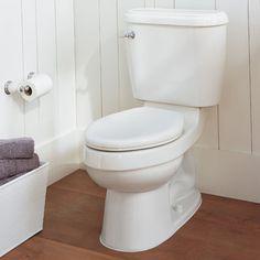 bathroom cleaner 1
