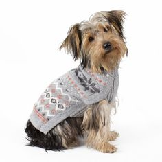 You'll love to the heavenly feel of this luxurious Peruvian alpaca small dog sweater. Hand-loomed from a sumptuous alpaca blend, this gorgeous turtleneck will keep your little doggy cozy warm all seas Small Dog Sweaters, Small Dog Clothes, Frozen Snowflake, Beautiful Dogs, Small Dogs, Snowflakes, Dog Cat, Winter Hats, Crochet Hats