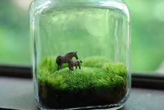 moss terrarium mother and child