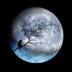 Lovely moon.