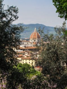 #Florence #Italy view from the Bardini