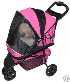 Pet Gear Special Edition Pet Stroller for cats and dogs up to Raspberry (Misc. Cat Stroller, Biking With Dog, Pet Gear, Best Dog Training, Cat Carrier, Dog Travel, Dog Feeding, Dog Agility, Outdoor Dog