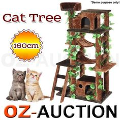 160cm-Cat-Activity-Gym-Tree-Deluxe-Cat-Post-Condo-Furniture-House-Toy