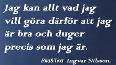 Ingvar Nilsson Föreläsare och samhällsdebattör.