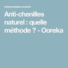Anti-chenilles naturel : quelle méthode ? - Ooreka