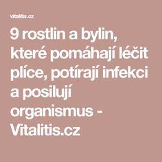 9 rostlin a bylin, které pomáhají léčit plíce, potírají infekci a posilují organismus - Vitalitis.cz
