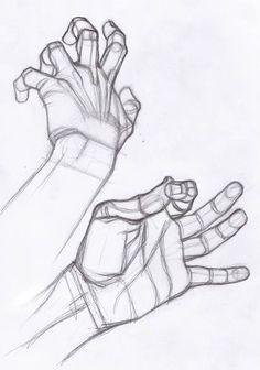 AnatoRef | Hand Studies                                                                                                                                                                                 Más                                                                                                                                                                                 Más