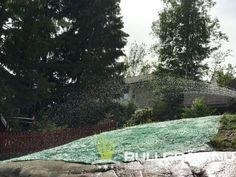 Vattnar rullgräsduken med vattenspridare på timer. Blir kanon! Extra gödning efter 2 v om man vill boosta på gräset och tillväxten ännu mer. Villa, Plants, Plant, Fork, Villas, Planets