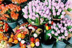 ♡༺✿ ☾♡ ♥ ♫ La-la-la Bonne vie ♪ ♥❀ ♢♦ ♡ ❊ ** Have a Nice Day! ** ❊ ღ‿ ❀♥ ~ Sun 31st May 2015 ~ ❤♡༻ ☆༺❀ .•` ✿⊱ ♡༻ ღ☀ᴀ ρᴇᴀcᴇғυʟ ρᴀʀᴀᴅısᴇ¸.•` ✿⊱╮ ♡ ❊ **