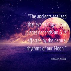 "Occult La Luna: ""The ancients realized that everything on our planet depends on & is affected by the natural rhythms of our Moon."" Hibiscus Moon Quote 