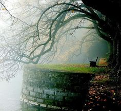 Seen here is a beautiful single bench overlooking Lake Constance from Lindenhof Park which is located in Lindau a Bavarian town and island on the eastern side of Lake Constance in Germany (the lake spans areas of Germany Switzerland and Austria). Photograph by: Peter and Ute Grahlmann by livingonearth
