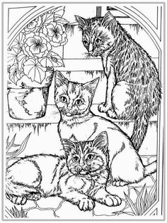 this is cat coloring pages for adult realistic coloring pages 14037 you can download