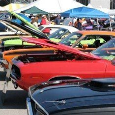 How to Host a Car Show...  Everything you need to know for hosting your own car show for profit or non-profit benefits.
