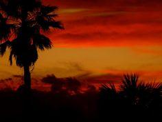 Port Orange, FL