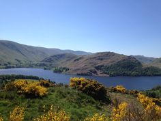 Howtown Bay & Hallin Fell, Ullswater.