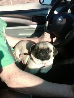 MMM sunny car ride.