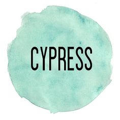 Derived from the branches of the tall evergreen tree, Cypress essential oil has a fresh, clean aroma that's energizing and refreshing. Cypress is frequently used in spas and by massage therapists. Cypress contains monoterpenes, making it beneficial for oily skin conditions. It has a grounding, yet stimulating effect on the emotions making a popular oil to diffuse during times of transition or loss. Cypress promotes vitality and energy, and is commonly diffused with citrus oils for an…