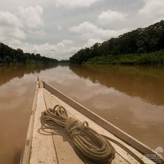 Not only is the Amazon River stunningly beautiful, it's a critical source of life. Nearly 20% of all freshwater runoff to the oceans on the the planet tracks through the Amazon River. #whytheamazon #water #life #river #rainforest #amazon #boat
