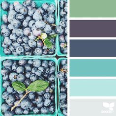 today's inspiration image for { berry hues } is by @djmight ... thank you, Elena, for another incredible #SeedsColor image share!