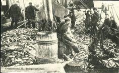 Møre og Romsdal fylke Kristiansund Drivgarnsfiskere . Fint arbeidslivsmotiv. Utg Loennechens bokhandel, postgått 1931