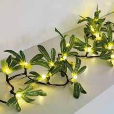 Mistletoe String Lights