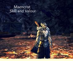 Show us your favorite cosmetic outfit, Dol Amroth swan knight by Murtanion