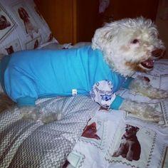 Floquinho com o pijama novo. Amooooooo !♥ ♥