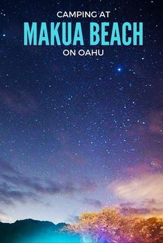 An amazing experience camping at Makua Beach on Oahu underneath a blanket of stars before waking up to swim with dolphins.