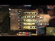 Guild Wars 2 Tank Beast Master Ranger Build