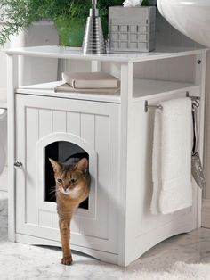 Kitty Washroom looks like furniture, but disguises the litter box. Forget bulky plastic covers. This cabinet combines good looks and practicality by hiding the litter box with style. It also gives you additional storage and display space in any room.