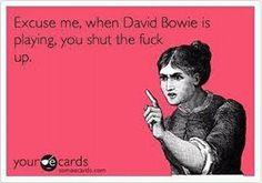 Me in the car 😂😂 David Bowie Meme, Stupid Funny Memes, Hilarious, David Bowie Tattoo, Bowie Blackstar, David Bowie Labyrinth, Music Memes, David Jones, Playing Guitar
