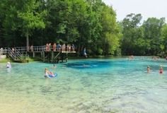 This Is The Newest State Park In Florida And It's Incredible. Welcome to Gilchrist Blue Springs State Park in High Springs, Florida's newest state park. (High Springs is about 20 miles from Gainesville. Places In Florida, Visit Florida, Florida Vacation, Florida Travel, Vacation Places, Florida Beaches, Vacation Destinations, Dream Vacations, Vacation Spots