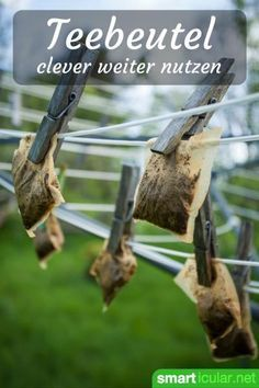 Don& throw away used tea bags - 7 amazing uses - When the tea is enjoyed, the teabag usually goes to waste. There are some useful ways to use it to - Belleza Diy, Used Tea Bags, Invisible Stitch, Budget Planer, Clothing Hacks, House Cleaning Tips, Ways To Save Money, Outdoor Fun, Better Life