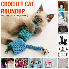 Two of my favorite things -- cats and crochet! Tales of a Crafty Mommy: Crochet for Cats Roundup