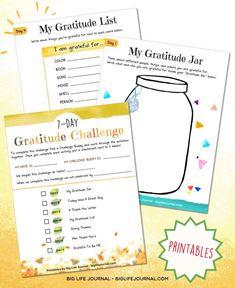 challenges kit gratitude jar big life journal