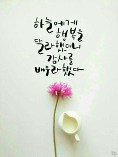 Korean Handwriting, Embrace Quotes, Korea Quotes, Korean Tattoos, Caligraphy, Wise Quotes, Cool Words, Quotations, I Am Awesome