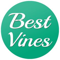 Best Vines: Those Friends Who Can Eat Anything and Never Get Fat by Lele Pons THANK YOU!!!! Hahahaaha