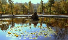Autumnal mood in the Imperial Park - Rainer Leiss