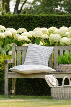 Hydrangeas and a Bench for the garden Outdoor Retreat, Outdoor Spaces, Outdoor Living, White Cottage, Urban Cottage, Southern Homes, Southern Charm, Garden Seating, White Gardens