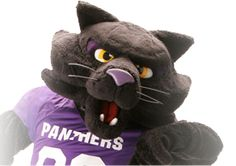 Love my UNI Panthers!