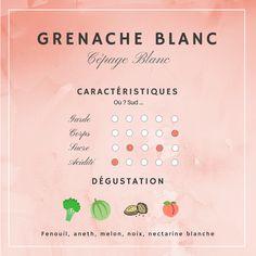 Guide Vin, Wine O Clock, In Vino Veritas, Champagne, Wine Tasting, White Wine, Grand Cru, Blog, Comics