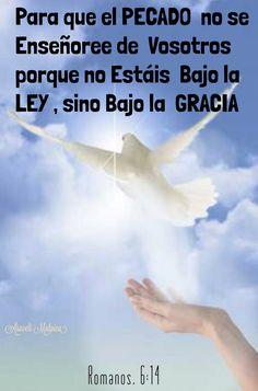 ARACELI MALPICA- Posters : ROMANOS, 6:14 Romanos, 6:14 - Para que el pecado no se enseñoree de vosotros; porque no estáis bajo la ley, sino bajo la gracia.